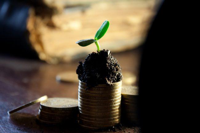 Passives Einkommen kann man im Internet mit Nischenseiten generiren